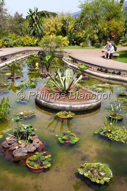 Philippe blanchot madere 24 - Jardin botanique madere ...